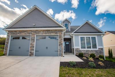 Roanoke Single Family Home For Sale: 64 Primrose Ct