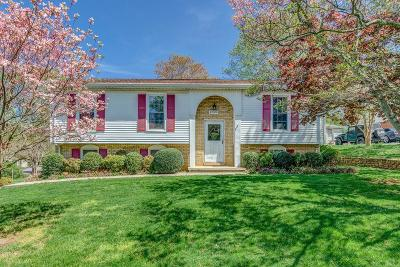 Roanoke Single Family Home For Sale: 2508 Steele Rd