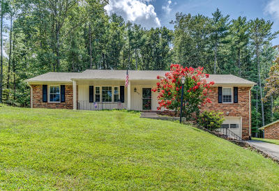 Roanoke County Single Family Home For Sale: 2726 Mallard Dr SW