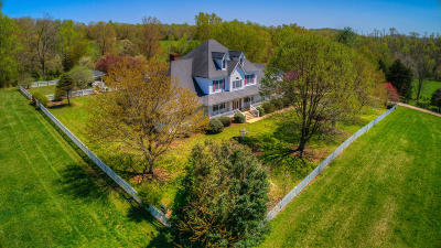 Single Family Home For Sale: 1048 Gidsville Rd