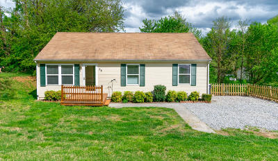 Roanoke County Single Family Home For Sale: 58 Berkshire Cir