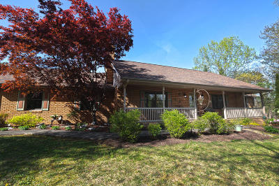 Troutville Single Family Home For Sale: 466 Woodridge Rd