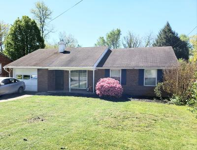 Roanoke City County Single Family Home For Sale: 4654 Desi Rd NW