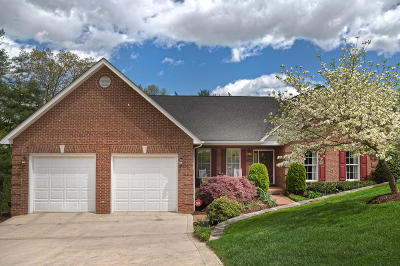 Roanoke County Single Family Home For Sale: 5818 Winnbrook Dr