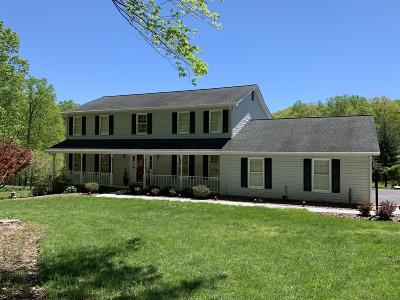 Roanoke County Single Family Home For Sale: 405 Brookledge Dr