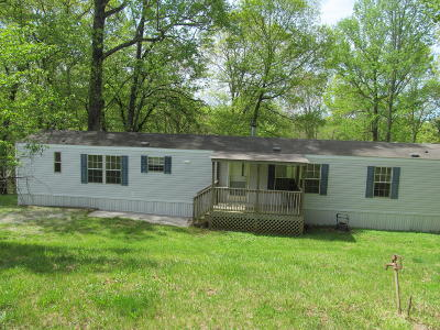 Blue Ridge Single Family Home For Sale: 312 Piney Branch Rd