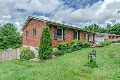 Roanoke County Single Family Home For Sale: 10396 Ivy Ridge Rd