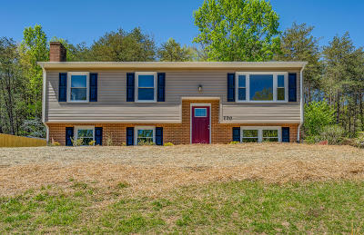 Roanoke City County Single Family Home For Sale: 770 Estates Rd SE