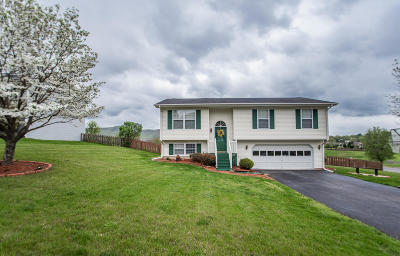 Roanoke County Single Family Home For Sale: 4949 Orchard Park Dr