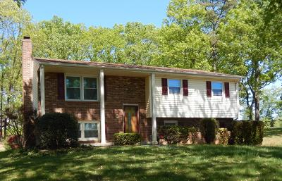 Single Family Home For Sale: 2110 Ruritan Rd