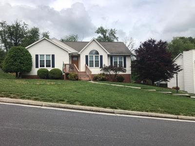 Roanoke Single Family Home For Sale: 3706 Derby Dr