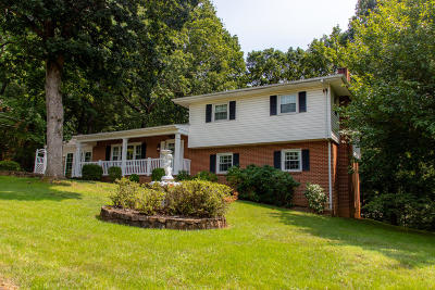 Vinton Single Family Home For Sale: 517 Chestnut Mountain Dr