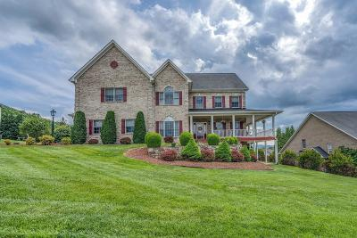 Roanoke County Single Family Home For Sale: 370 Stoneledge Dr