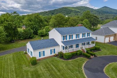 Vinton Single Family Home For Sale: 499 Olney Rd