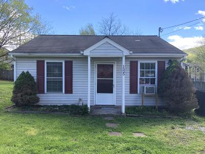 Roanoke Single Family Home For Sale: 1525 Riverside Ter SE