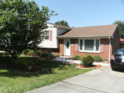 Roanoke Single Family Home For Sale: 4652 NElms Ln NE