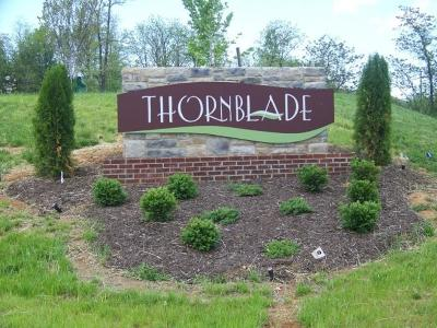 Blue Ridge Residential Lots & Land For Sale: Lot 1 Thornblade Way