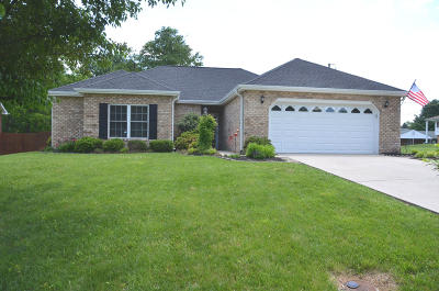 Roanoke Single Family Home For Sale: 1740 McMillian Ct NW