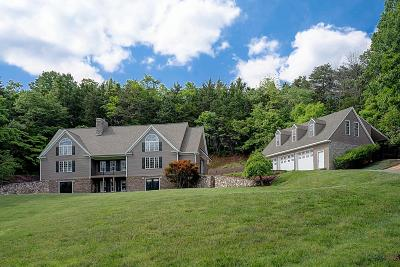 Botetourt County, Roanoke County Single Family Home For Sale: 1554 Haymakertown Rd