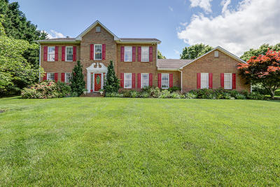 Bedford County Single Family Home For Sale: 1202 Old Liberty Ter