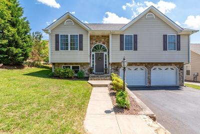 Vinton Single Family Home For Sale: 1607 Mountain View Rd