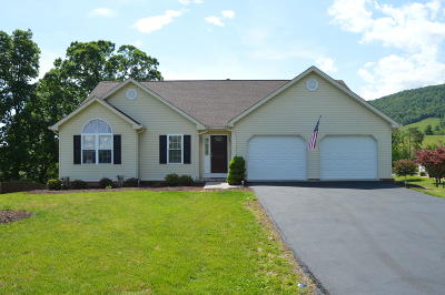 Roanoke VA Single Family Home For Sale: $309,900