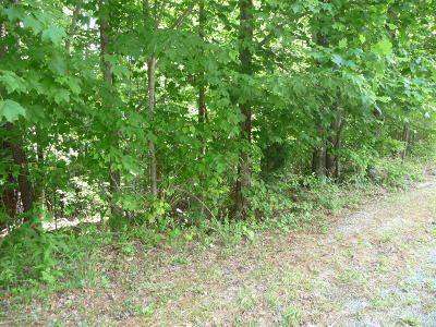 Blue Ridge Residential Lots & Land For Sale: Lot 8 Fields Ave