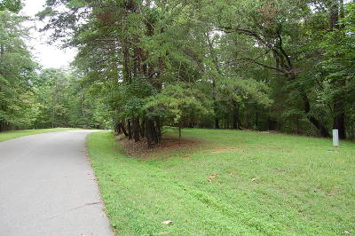 Bedford County Residential Lots & Land For Sale: Lot 56 Ridgeway Ct