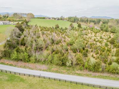 Bedford County Residential Lots & Land For Sale: Lot 3 Founding Way Rd