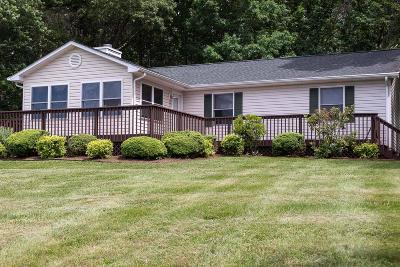 Bedford County Single Family Home For Sale: 209 Tracy Dr