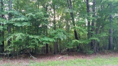 Residential Lots & Land For Sale: Lot 1 Mallard Point Rd