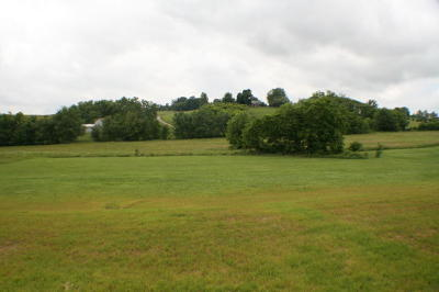 Bedford County Residential Lots & Land For Sale: Stewartsville Rd