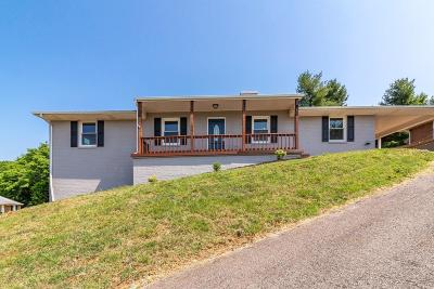 Roanoke County Single Family Home For Sale: 908 Norbourne Ave