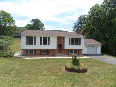 Roanoke County Single Family Home For Sale: 130 British Woods Dr