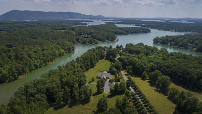 Huddleston VA Single Family Home For Sale: $1,875,000