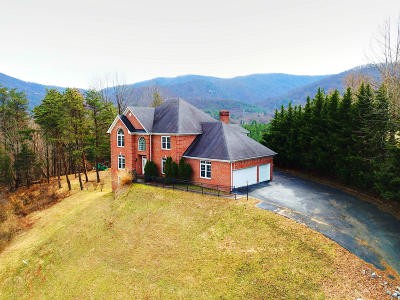 Roanoke Single Family Home For Sale: 7016 Hollyberry Rd