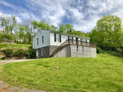 Roanoke Single Family Home For Sale: 3626 Belle Ave NE