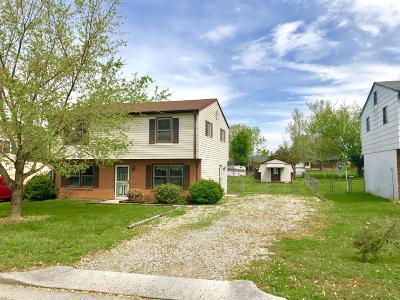 Roanoke Single Family Home For Sale: 1556 Gordon Ave SE