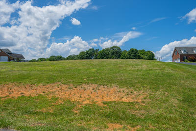 Troutville Residential Lots & Land For Sale: Sowder Farm Rd