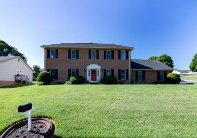 Salem Single Family Home For Sale: 1733 Stone Mill Dr