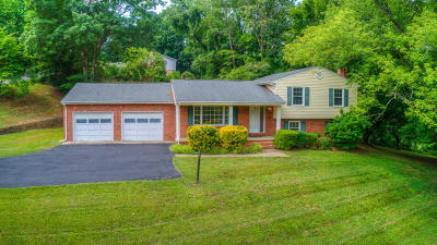 Roanoke County Single Family Home For Sale: 3782 Tomley Dr