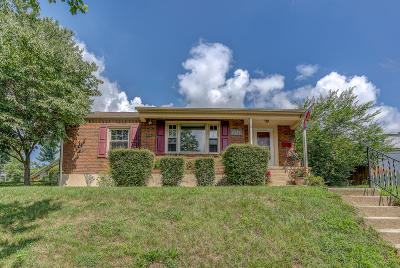 Roanoke City County Single Family Home For Sale: 2729 Montvale Rd SW