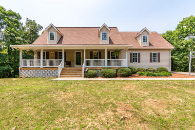 Blue Ridge Single Family Home For Sale: 385 Hufton Brook Ln