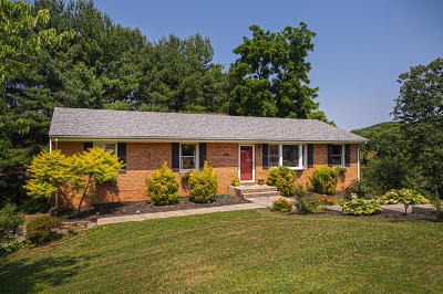 Roanoke County Single Family Home For Sale: 8124 Waterfall Dr