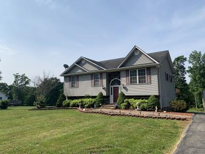 Bedford County Single Family Home For Sale: 2405 Stony Fork Rd