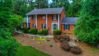 Blue Ridge Single Family Home For Sale: 323 Stonebridge Dr