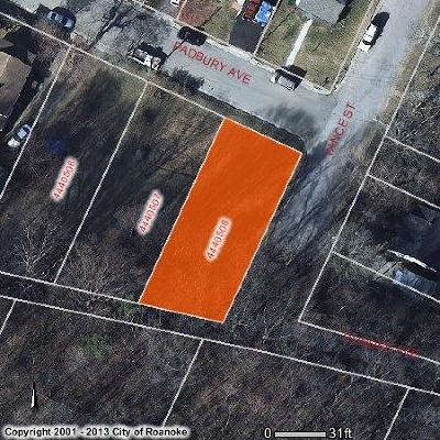 Roanoke City County Residential Lots & Land For Sale: Padbury Ave SE