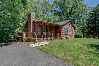 Bedford County Single Family Home For Sale: 1358 Hales Ford Rd