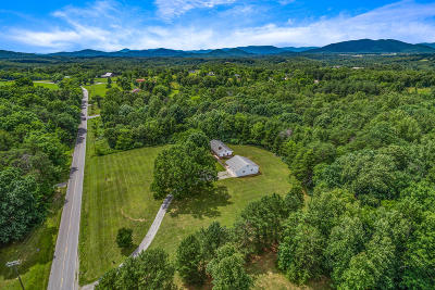 Bedford County Single Family Home For Sale: 4099 Joppa Mill Rd
