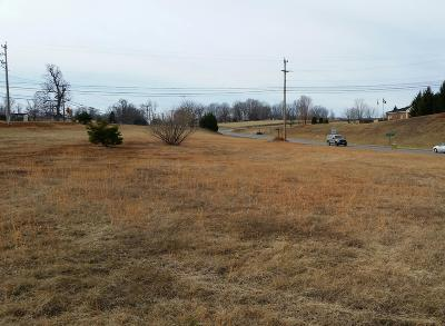 Moneta VA Residential Lots & Land For Sale: $299,999